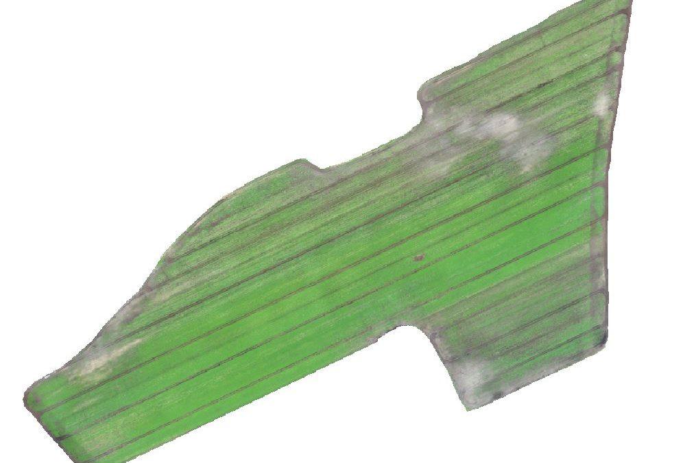Définition de zones de stress - Carottes - RGB